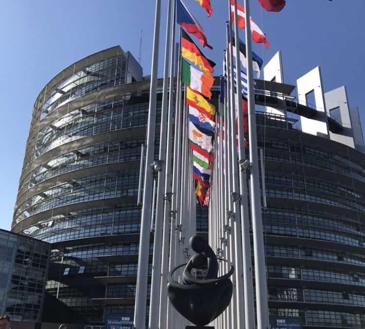 EU-US Datenschutzschild muss ausgesetzt werden