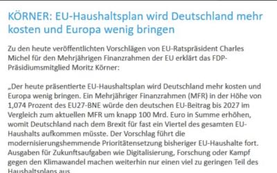 Pressemitteilung: EU-Haushaltsplan wird Deutschland mehr kosten und Europa wenig bringen
